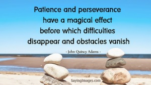 patience and perseverance