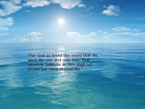 John 3 16 #2