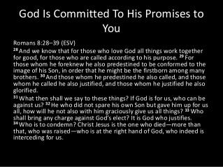 Romans 8 28-39