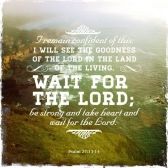 Psalm 27 13 14