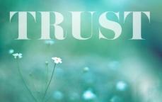 trust-5
